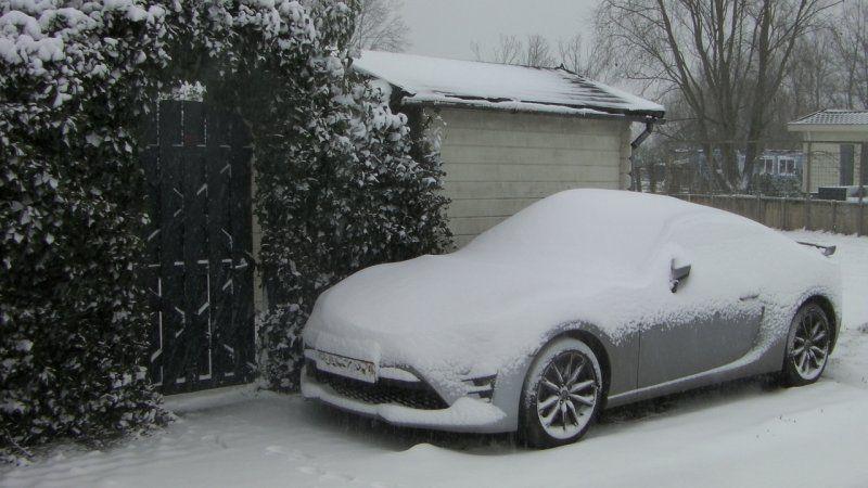 Snow2021b.JPG
